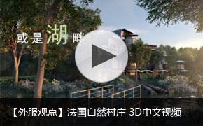 法国自然村庄 3D视频中文